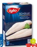 Scholle von Iglo