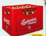Budweiser Bier von Samson