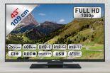 TV LED S43.74FTS von Silva Schneider