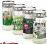 Premium Grablicht von Hofer Kerzen