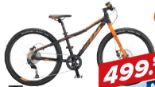 Mountainbike Wild Speed von KTM