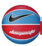 Basketball Dominate 8P von Nike