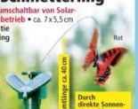 Solar-Schmetterling von I-Glow
