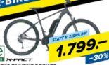 E-Mountainbike E Power von X-Fact