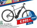 E-Mountainbike E Power von X-Fact
