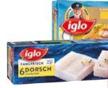 Dorsch von Iglo