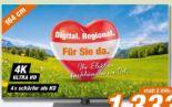 Ultra HD LED-TV TX-65FXW784 von Panasonic