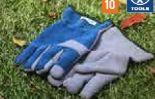 Allwetterhandschuh von Lux-Tools