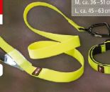 Halsband Voyager von Dogs Creek