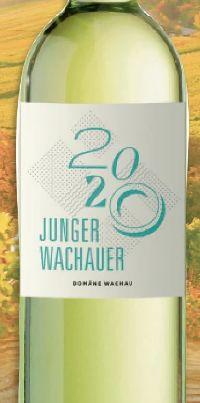 Junger Wachauer von Domäne Wachau