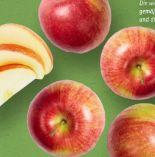 Bio Äpfel von Ein Gutes Stück Heimat