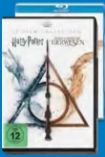DVD Wizarding World