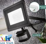 LED-Außenstrahler von Livarno Lux