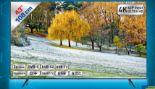 LED TV 43TU7170 von Samsung