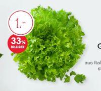 Gentile Salat