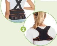 Rücken-Arbeitsgurt von Sensiplast