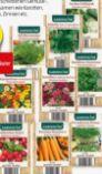 Gemüse-Blumensamen von Gardenline