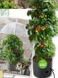 Tomaten-Pflanzgefäß von Parkside