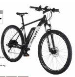 E-Bike MTB EM 1724.1 von Fischer