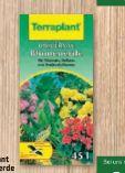Blumenerde von Terraplant