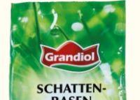 Schattenrasen von Grandiol