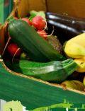 Obst-Gemüse-Box