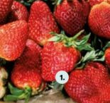 Premium Erdbeeren von Gourmet