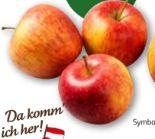 Äpfel Elstar von Da komm' ich her
