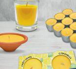 Citronellakerzen von Hofer Kerzen