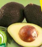 Bio-Avocado