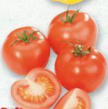 Tomaten von LGV