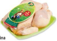 Premium Hühner von Perutnina Ptuj