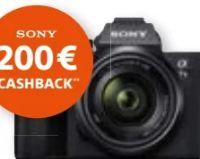 Systemkamera Alpha 7 III von Sony
