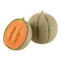 Zuckermelone von SanLucar