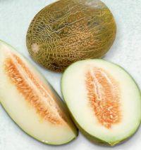 Piel de Sabo Melone