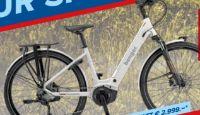 E-City-Bike 28 von Benger